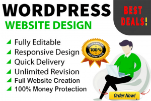 [3 Star Quality] Full Custom WordPress Website Development Services
